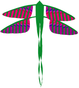193 Dragonfly D